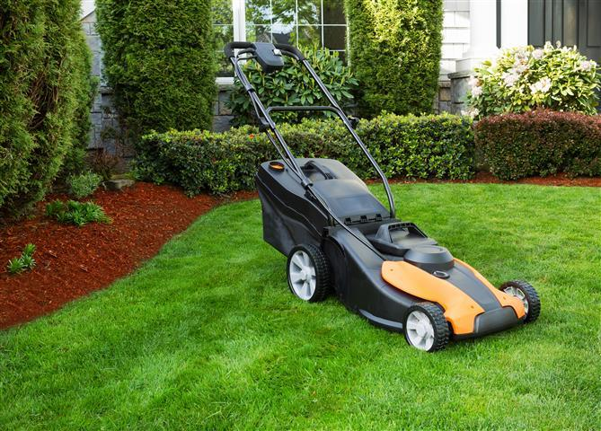 Backyard Maintnence Tips for New England Properties