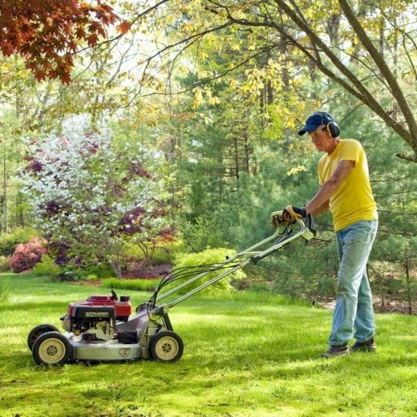 New England Lawn Prep Tips