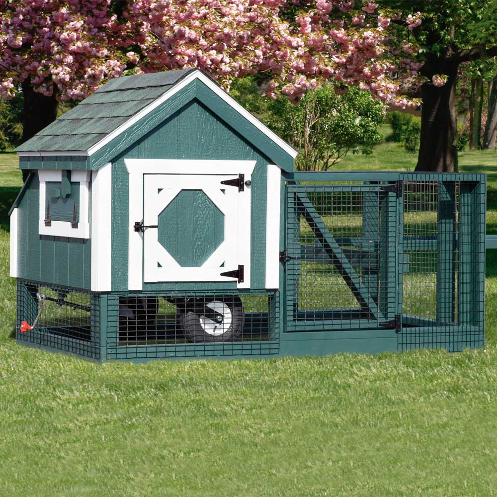 MA NH Chicken Coop