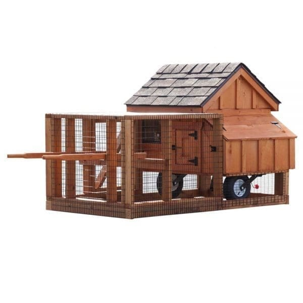 Small Chicken Coops MA NH