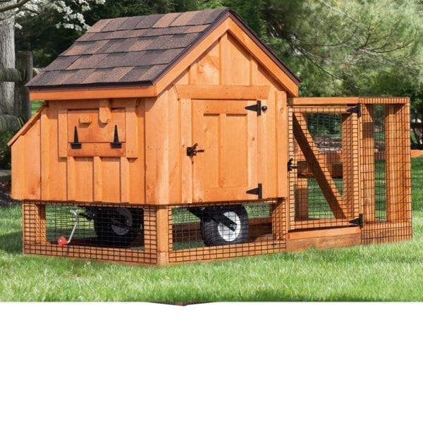 DIY Chicken Coops MA NH