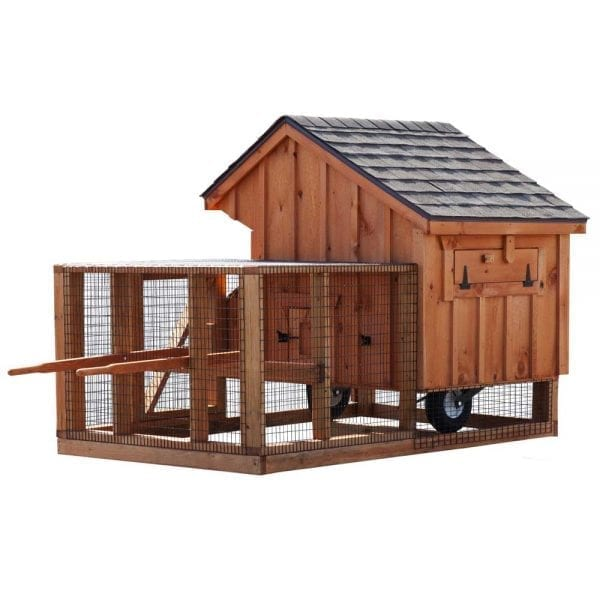 Chicken Coop and Run MA