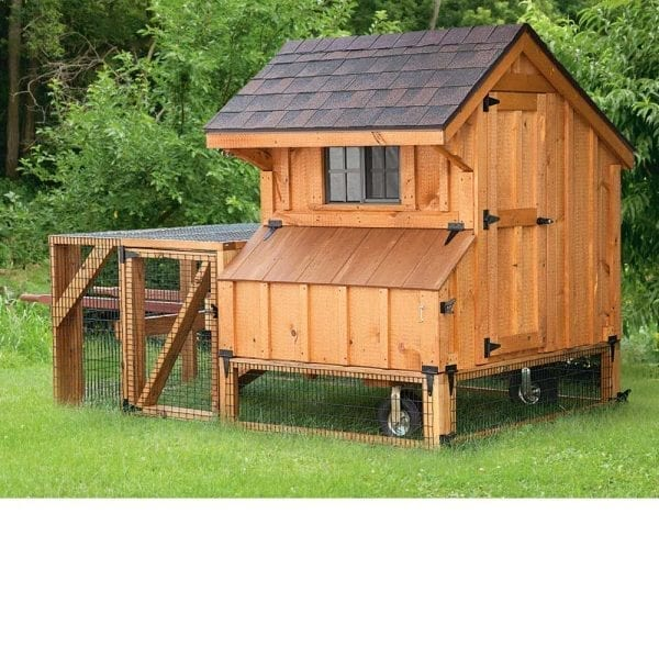 Amish Chicken Coops NH